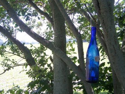 In the South, hanging blue bottles in trees is an old custom. It is supposed to bring good health to the household. This is just a wine bottle that I added a odds-n-ends to so it clinks and chimes when the breeze blows.