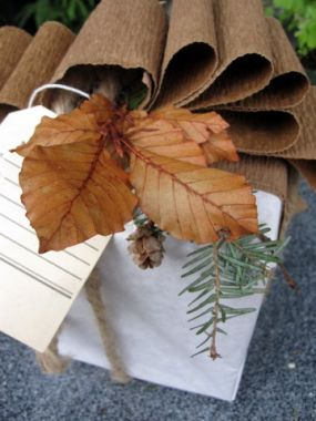Copper Leaf and Mountain Hemlock with its beautiful baby pinecones create the garnish for this package.