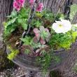 Fill planter with dirt and add your favorite plants.