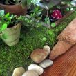 The base of the table scape is fashioned from a roll of moss. It is lined on the bottom so it will protect the table. I simply cut it to an appropriate length and edged it with bark and stones to create the natural and organic appeal.