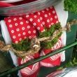 The red and white napkins with rope and moss add the perfect punch!