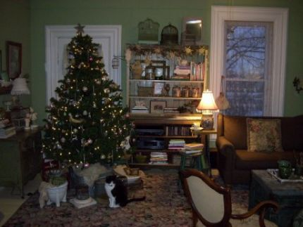 Adding a tree always cozies up the room...  Thats my McCoy posing in front of the tree (no collar - prefers posing to pretties)!