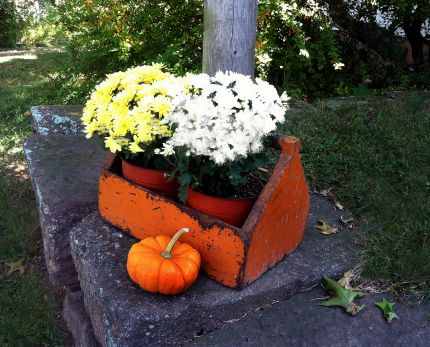 An old orange toolbox, mums, pumpkins…it's fall!