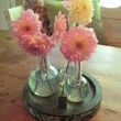 Lovley dahlias in lab bottle. only need a few flowers to make a big impact. Thats good for the old pocket book.